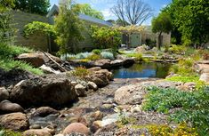 Working with what is already in place, modern swimming pools can be re-created into natural wonderlands that support Mother Nature. More on www.easyDIY.co.za.