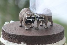 Raccoon Wedding Cake Topper   Bride and Groom  by WeddingPros