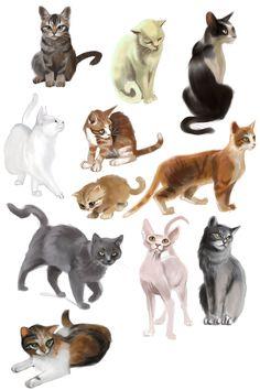 cats speedpaints by cut-box
