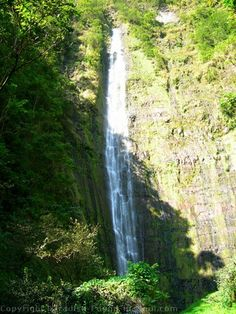 Hike Maui: The Pipiwai Trail in Haleakala National Park