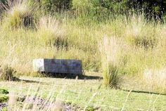 A seat in the coutry - Fiona Brockoff - Coast & Country Landscape Design