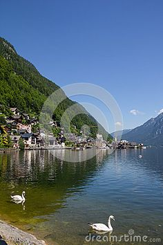 #View To #Hallstatt In #Salzkammergut @dreamstime #dreamstime @Salzkammergut @iSalzkammergut #nature #landscape #lake #travel #sightseeing #austria #summer #season #holidays #vacation #mountains #stock #photo #portfolio #download #hires