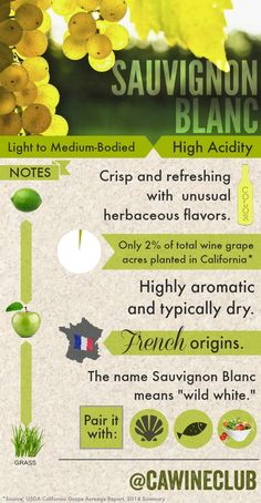 Refresh with some facts about #SauvignonBlanc. #wine www.winewizard.co.za