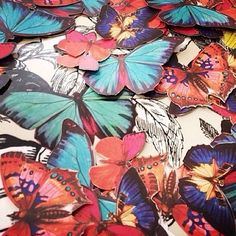 """A pile of butterfly cut outs in shades of red and blue. """"Welcome to Instagram @osborneandlittle. Look forward to launching our next collection soon"""""""