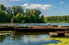 Az egyik legszebb eldugott strandvidék Magyarországon: mutatjuk a morotvák varázslatos táját - Azonnal kedvet kapsz csónakázni, úszkálni, pihenni a parton. Hungary, Explore, Park, Amazing, Places, Parks, Lugares, Exploring