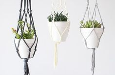 Maceteros de trapillo colgangtes Diy Shows, Macrame Curtain, Macrame Patterns, Macrame Jewelry, Diy Projects To Try, Plant Hanger, Boho Chic, Diy Crafts, Plants