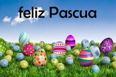 Zemskys: Clothing for Work, School and Play: Felices Pascuas