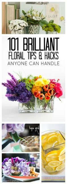 Looking for some home decor ideas? Here are 101 flower arrangement tips, tricks and ideas that are so easy even a beginner can pull them off! You're welcome!