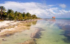 Affordable Excursions in San Pedro, Belize