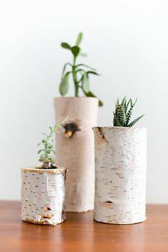 dispaying houseplants (6)