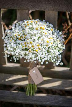 Ak si myslíte, že sa budeme venovať klasickému svadobnému závoju, ktorý v deň svadby zahaľuje tvár nevesty, ste na omyle. Stredobodom našej pozornosti je kvet, ktorý svojím vzhľadom a bohatstvom kvetov pripomína krajkový závoj nevesty. Gypsomilka, inak nazývaná aj nevestin závoj, je veľmi obľúbeným svadobným kvetom hlavne vďaka svojej jemnosti a krehkosti. My Vám ponúkame niekoľko tipov, ako túto rastlinku efektívne využiť ako doplnok na svadbe.