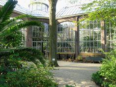 El Blog de La Tabla: Hortus Botanicus Amsterdam
