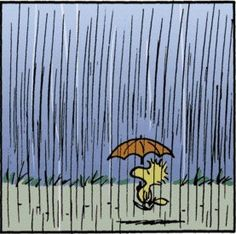 KaBOOM Peanuts Series 2, #7 - Rainy day