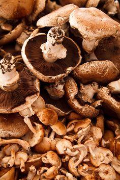 Passover Mushroom Pilaf