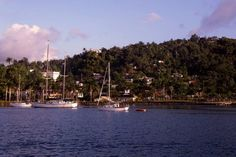 Arriving in Port Antonio, Jamaica  | mjsailing.com