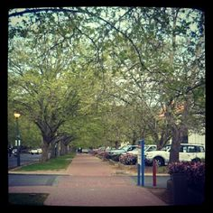 Instagram photo by @misskimlanceley via ink361.com Sidewalk, Instagram, Side Walkway, Sidewalks, Pavement, Walkways