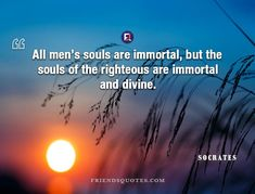Socrates Quote Applause waits success - All men's souls are immortal, but the souls of the righteous are immortal and divine. Socrates Quotes, Waiting, Greek, Success, Author, Life, Men, Popular, Friends