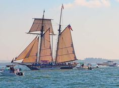 The Experience – Relaxing Luxurious Sail on Tampa Bay Lynx, Tampa Bay, Sailing Ships, Boats, Luxury, Blog, Check, Ships, Blogging