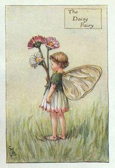 Daisy Flower Fairy Print c.1927 Fairies by Cicely Mary Barker