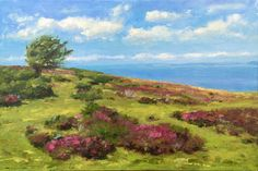 It was a beautiful Summer day on Exmoor, with a gentle breeze (not the usual crazy wind!) This painting captures that warm Summer time with it's lighthearted Fresh Green, The Fresh, Summer Days, Summer Time, Over The Hill, Pink Purple, Blue, Green Grass, Sunny Days