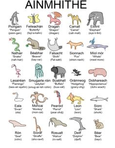 Animals in Irish (Gaeilge)! Colorful poster of Ainmhithe! Celtic Culture, Irish Culture, Scottish Gaelic, Gaelic Irish, Gaelic Words, Irish Language, Irish People, Erin Go Bragh, Celtic