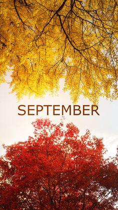 """winspirex on """" Calendar Wallpaper, Fall Wallpaper, Wallpaper Backgrounds, Nature Wallpaper, Seasons Months, Months In A Year, Samsung Galaxy Wallpaper, Cellphone Wallpaper, New Month Wishes"""