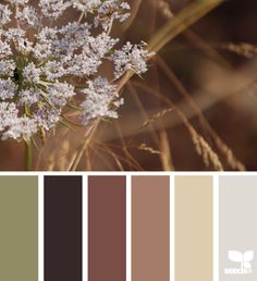 Nature hues color palette by design seeds.