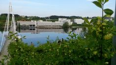 May 2014 Magnificent morning. Summer 2014, University, River, Celebration, Pictures, Outdoor, Photos, Outdoors, Outdoor Games