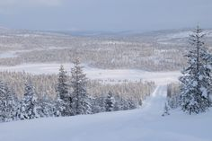 Nordic Paradise: Finding Finland and Friends thanks to Nokian Tyres
