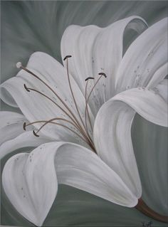 Apple White Lily