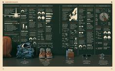 Nice gridyness infographics