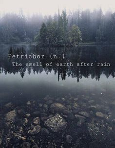 Petrichor. The smell of earth after rain.