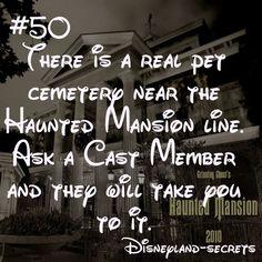 #✯Must go!#Best place# Disneyland Secret - DONE