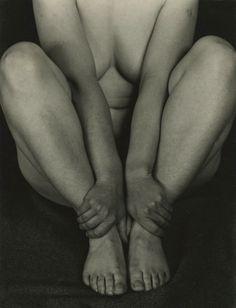 Edward Weston  (1886 - 1958) - Nude 99N (Fay Fuqua), 1933 - Howard Greenberg Gallery