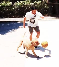 jensen with a beard playing basketball with a puppy -gifset- :)