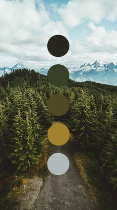 Brand color palette inspiration designed by Amari Creative, branding and design studio. Colour Pallette, Colour Schemes, Color Combos, Color Studies, Color Swatches, Color Theory, House Colors, Color Inspiration, Natural Colors