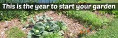 This is the year to start your garden