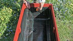 Odla i pallkrage – här är allt du måste veta | Leva & bo Raised Garden Beds, Vegetable Garden, Gardening Tips, Ladder, House, Hagen, Villa, Random, Gardens