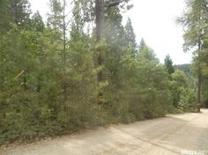 0 Casselbarry Ct, Pollock Pines, CA 95726 — This is a nice 2+ acre South facing lot with potential views. Seller is very motivated. Close proximity to Jenkinson Lake.