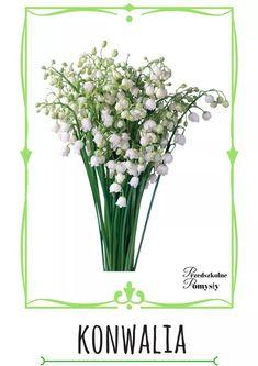 Flower Crafts, Montessori, Paper Flowers, Kindergarten, Nursery, Herbs, Jar, Education, Spring