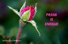 Voel de energie door je lijf stromen als je doet wat je het allerleukst vindt!