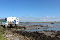 Read about the Ile d'Oléron...