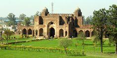 search engine optimization company Ludhiana, Punjab