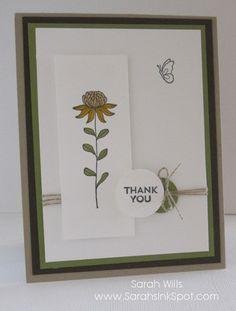 FloweringFieldsSunflower