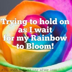 I'm still waiting after 4 years 3 losses. When will I have my Rainbow? Pregnancy After Miscarriage, Pregnancy After Loss, Pregnancy And Infant Loss, Ways To Get Pregnant, Getting Pregnant, Rainbow After The Storm, Pcos Infertility, Infant Loss Awareness, Meant To Be Quotes