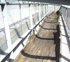 """La pirogue monoxyle (creusée dans le tronc d'un seul arbre) de 11,80 m de long, sortie du fleuve par les Ingénieurs du Service de la navigation du Rhône en 1862, est enfin revenue sur la commune où elle fut découverte. Elle avait été transportée au musée des Beaux-arts de Lyon avant d'être installée sous un abri dans le Parc de la Tête-d-Or. Elle y fut exposée à tous vents pendant près de 50 ans, munie de la seule mention """"Merci de ne pas toucher""""."""