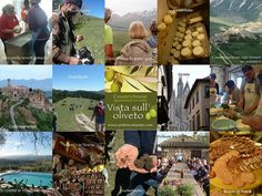 "Rondreis `de smaken van Umbrie` @ Countryhouse "" Vista sull'oliveto""  B&B, appartementen in Umbrië, Italië - 14-April https://www.evensi.it/rondreis-de-smaken-van-umbrie-countryhouse-vista/195563409"