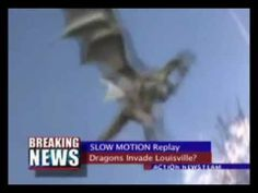 REAL DRAGON CAUGHT ON TAPE!
