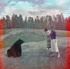 1950-1960 Two women feeding a black bear at Nuisance Grands, Banff National Park.
