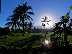 Sunrise in West Bali.